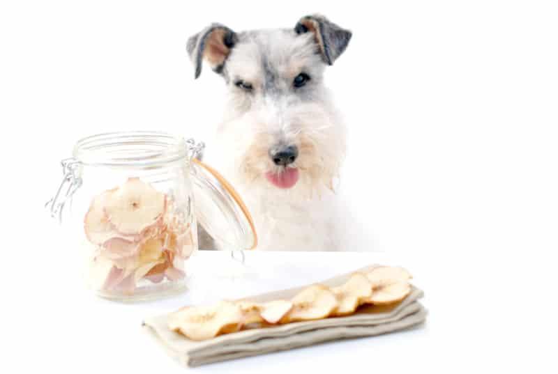 Chips de manzana y Willy